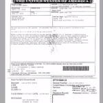 Immigration forms scanning
